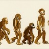 humanfactors